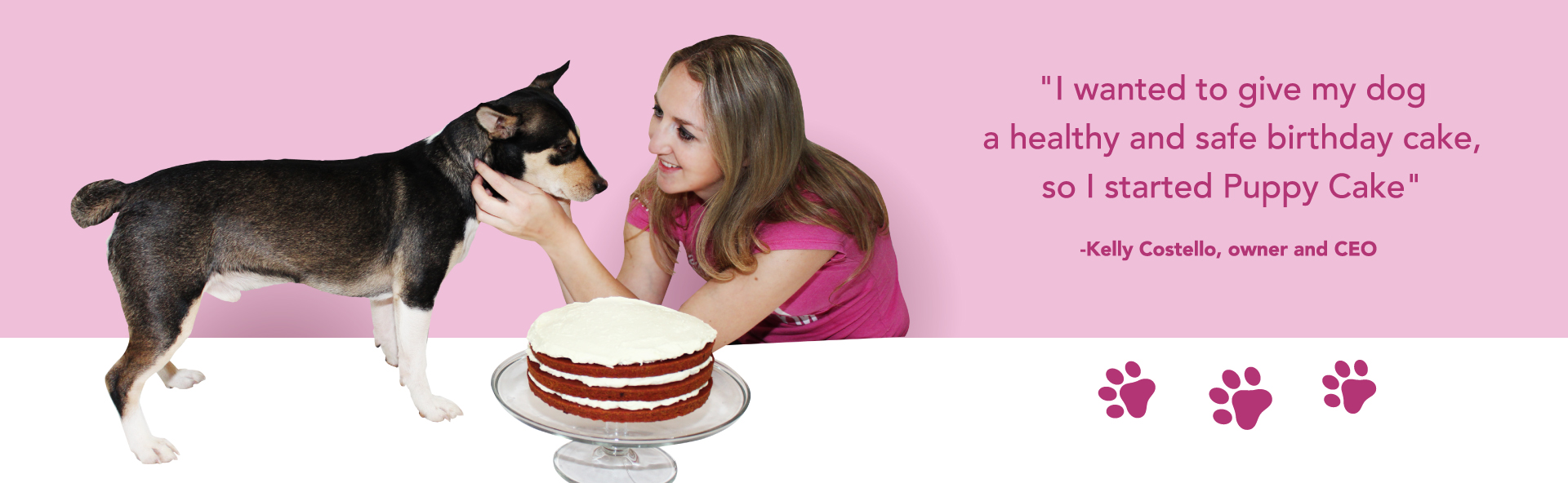 Tremendous Cake Mixes For Dogs Personalized Dog Birthday Cakes Dog Ice Funny Birthday Cards Online Fluifree Goldxyz